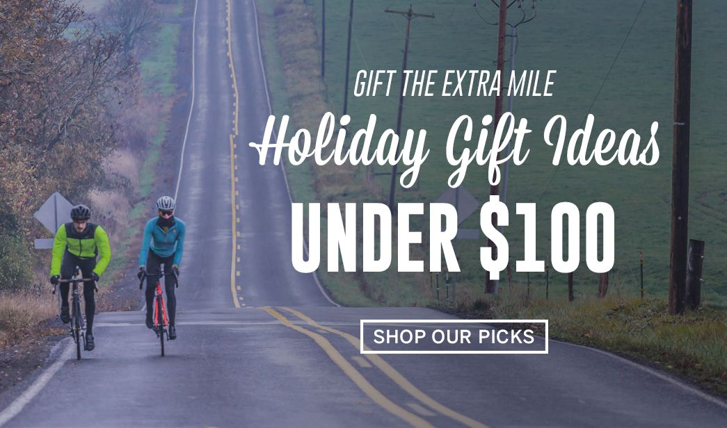 Holiday Gift Ideas Under $100